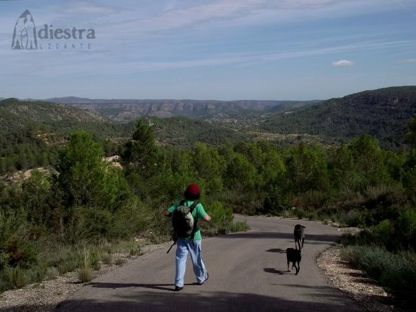 Ruta de 16 km con los perretes (cuidado con los tramos de asfalto a pleno sol)